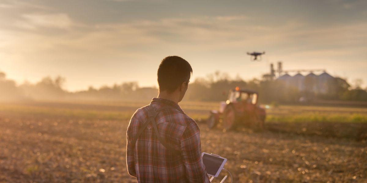Geometri, Ismea: le good practices nel settore agricolo